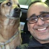 Aberdeen Pet Sitting Opportunity