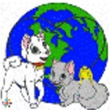 Dog Walker, Pet Sitter in Ocala