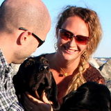 Quality House/Pet-Sitter: AF mil-spouse, non-smoker, professional & reliable