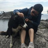Interested In Vancouver Pet Carer, British Columbia Jobs