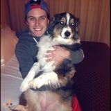 Dog Walker, Pet Sitter in Tempe
