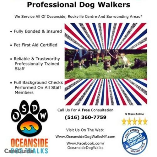 Pet Care Provider Heather Solomon's Profile Picture