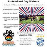 Dog Walker in Oceanside