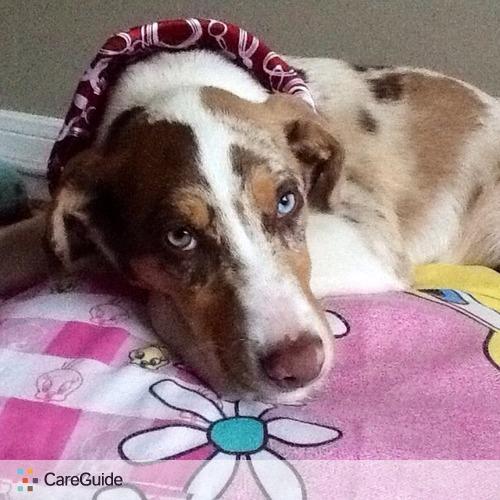 Pet Care Provider Narai Esparza's Profile Picture
