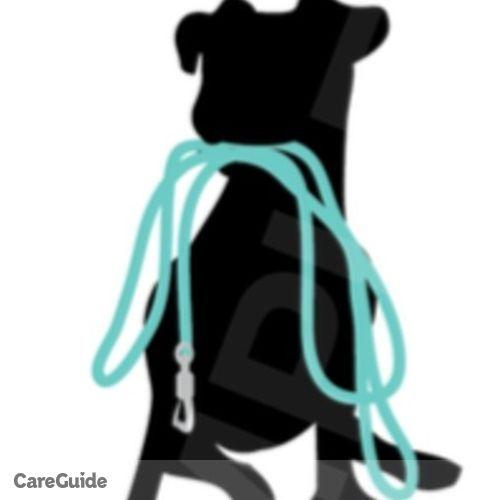 Pet Care Provider Amanda A's Profile Picture