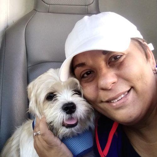 Pet Care Provider Mildred C's Profile Picture