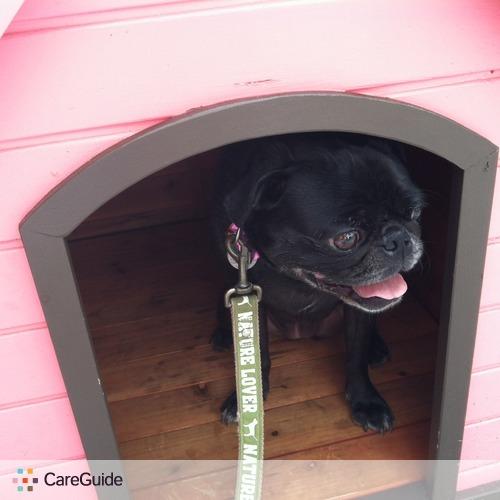 Pet Care Provider Rachel Sanches's Profile Picture