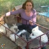 Babysitter, Nanny in Topanga