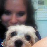 Dog Walker, Pet Sitter in Appleton