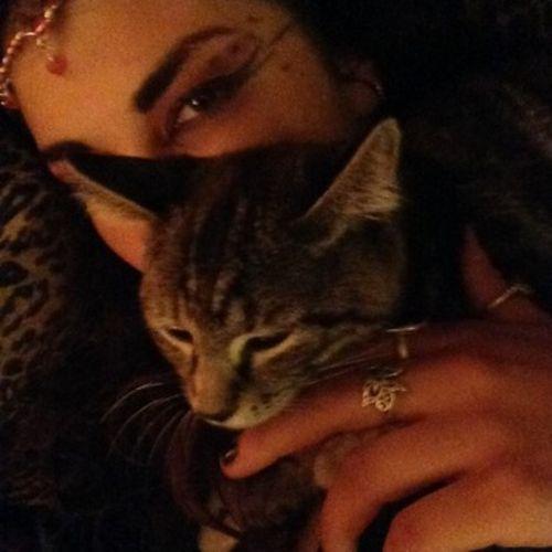 Pet Care Provider Rachael Sauvaget Gallery Image 2