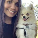 Tamarac, Florida Dog Sitting Professional
