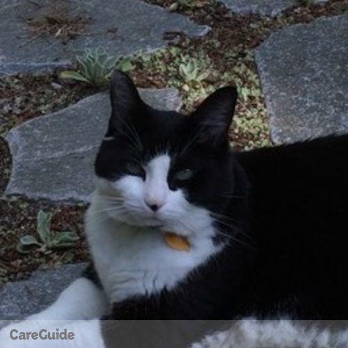Pet Care Provider Sharon D's Profile Picture