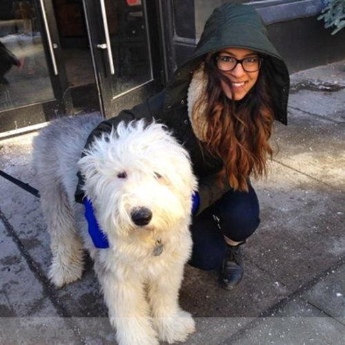 Pet Care Provider Sukhi Singh's Profile Picture