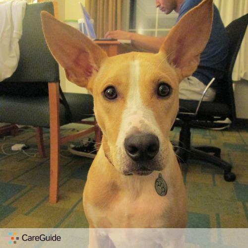 Pet Care Provider Cesar S's Profile Picture