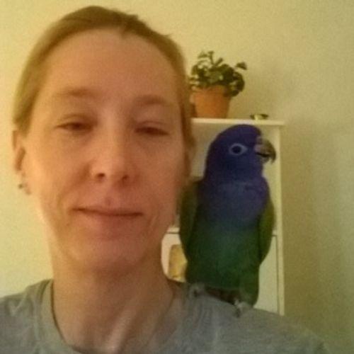 Pet Care Provider Karin P's Profile Picture