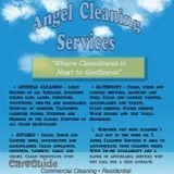 House Cleaning Company, House Sitter in Albany