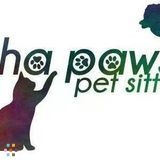 Dog Walker, Pet Sitter in Port Charlotte