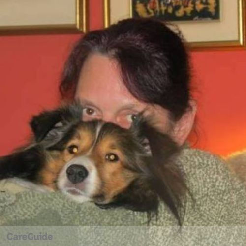 House Sitter Provider Fay York's Profile Picture