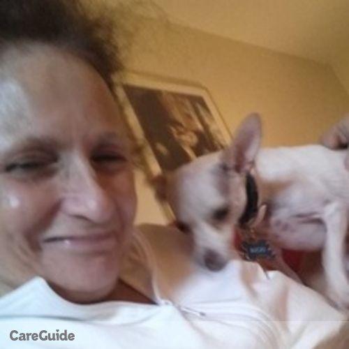 Pet Care Provider Victoria Kealy's Profile Picture