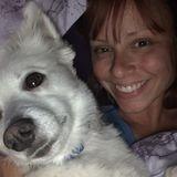 Valrico Pet Sitting Professional Seeking Being Hired