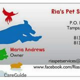 Dog Walker, Pet Sitter in Tampa