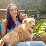 Interviewing For Hendersonville/Asheville Pet Sitting/Walking Professional Jobs
