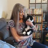 Houskeeper/Sitter flexible an trustworthy. Petsitter exp in petcare an love of all animals.