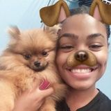 My name is Cynthia Jones and I am studying Pre Veterinarian at IUP . I offer Dog sitting , walking and sleepovers