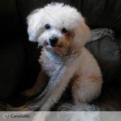Pet Care Provider Kira Warden's Profile Picture