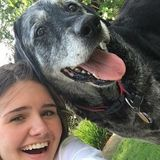Available: Caring Dog Sitter in Lawrence, Kansas