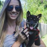 Dog Walker, Pet Sitter in Largo