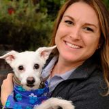 Customized Pet Care in your Home by a Professional Pet Sitter