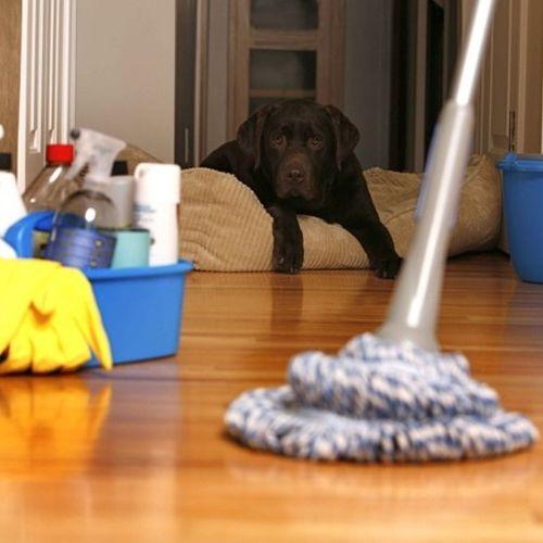 Housekeeper Provider  Gallery Image 1