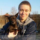 Dog Walker, Pet Sitter in Bakersfield