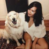 Animal Loving Gal / Recent ASU Graduate