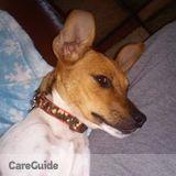 Pet Care Job in Kingsport