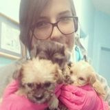 Young, committed and responsible pet-sitter