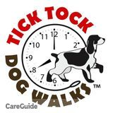 Dog Walker, Pet Sitter in Elk Grove