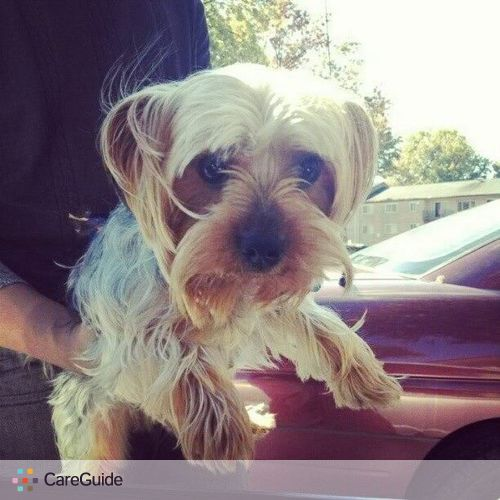 Pet Care Provider Stephon Millet's Profile Picture