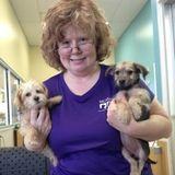 Wonderful Pet Trainer in Conroe