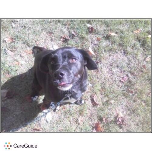 Pet Care Provider Kim Madden's Profile Picture