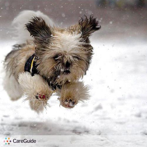 Pet Care Provider Trevor Deering's Profile Picture