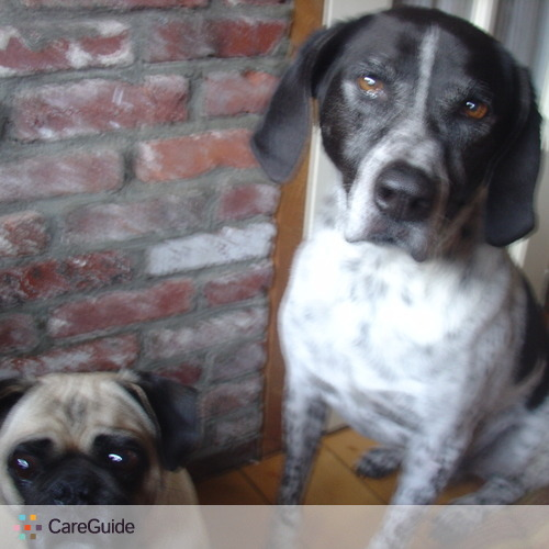 Pet Care Provider Jill C's Profile Picture