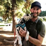 Certified Professional Dog Training/Pet Care in Los Angeles, California