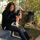 Pet Groomer,sitter,overnight,walking,cleaning, caretaker for children & animals!