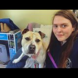 Im Sarah and I strive to make you and your pets feel as safe and comfortable as possible! :)