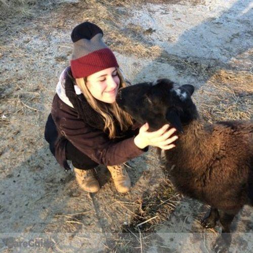 Pet Care Provider Olivia Carlson's Profile Picture