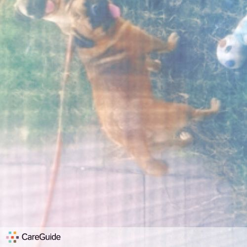 Pet Care Provider Alejandro Andujo's Profile Picture
