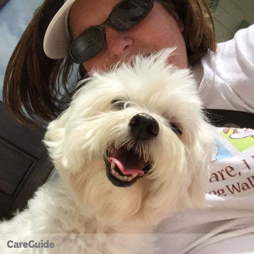 Pet Care Provider Christy Hackenberg's Profile Picture