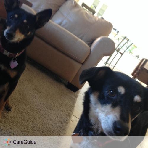 Pet Care Provider David Vasquez's Profile Picture